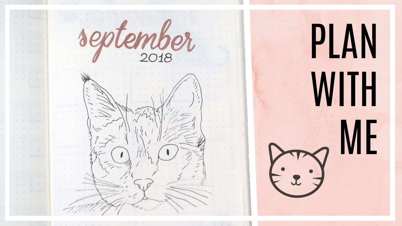 Bullet journal - september 2018 // katten thema