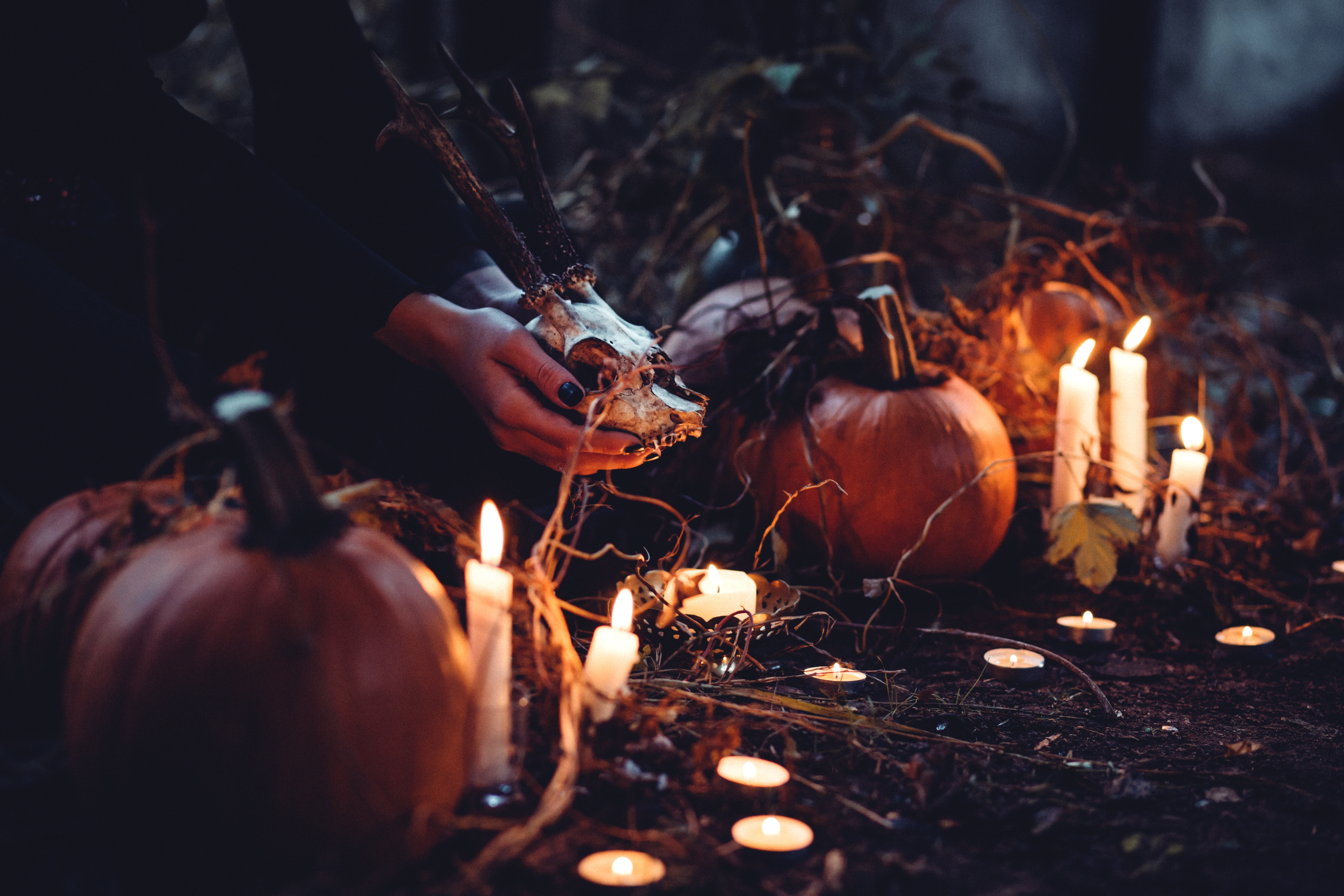 De spannendste films voor Halloween avond