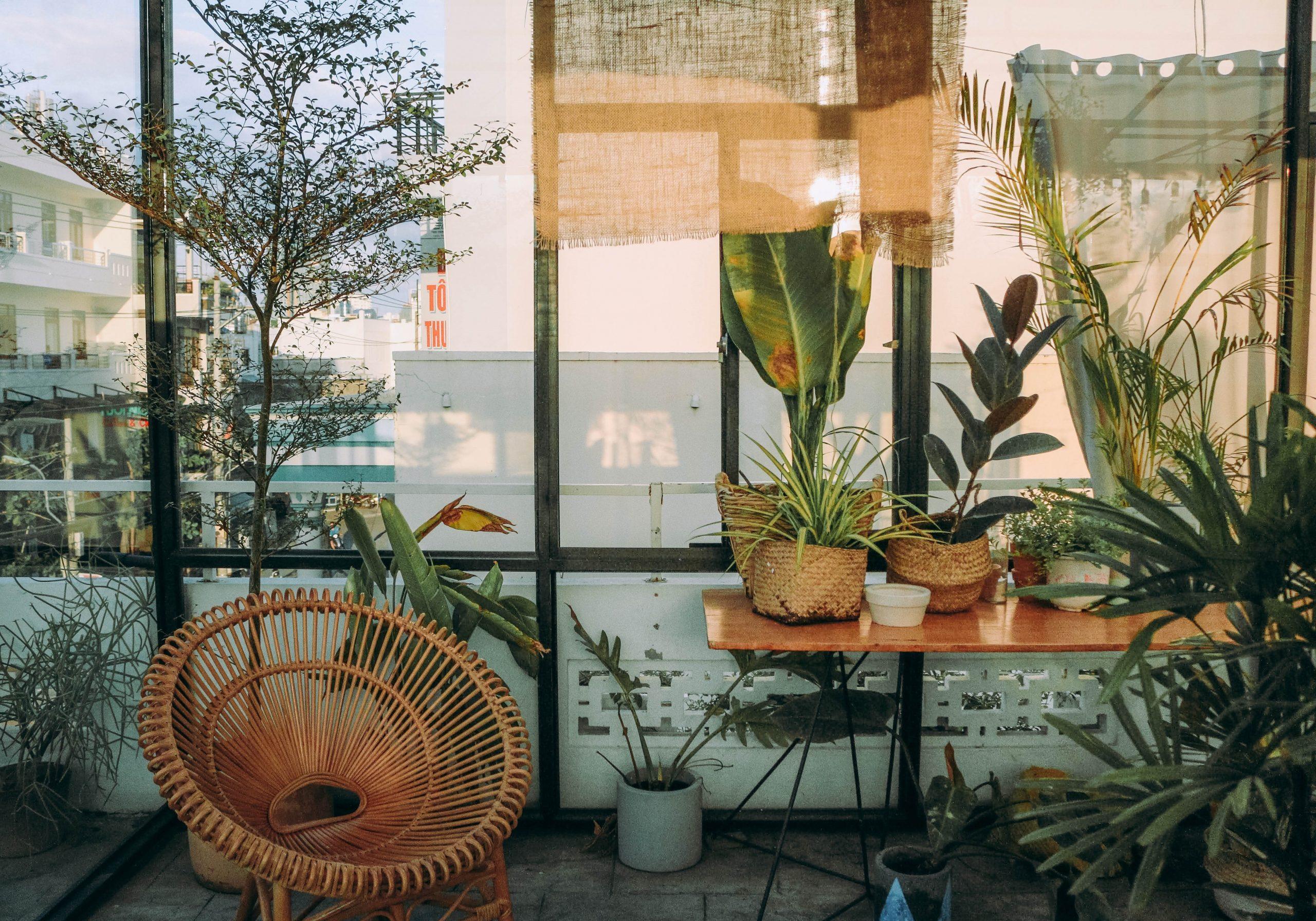 De toevoeging van planten in jouw interieur